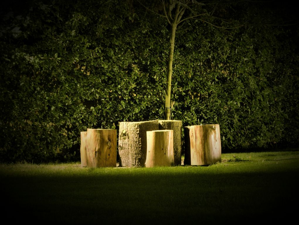 Stumpery downlighting