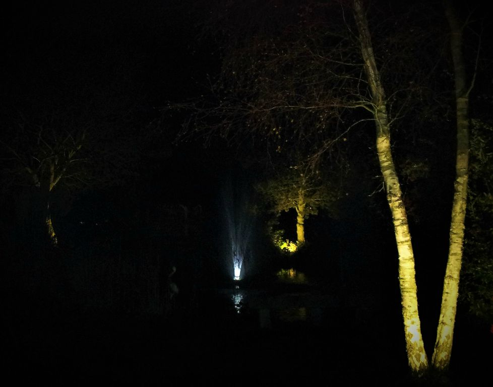 Large pond with lit Birches and fountain