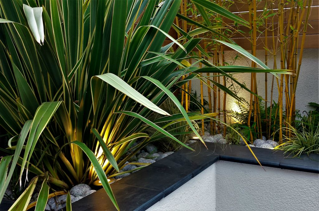 Raised bed lighting with Phormium