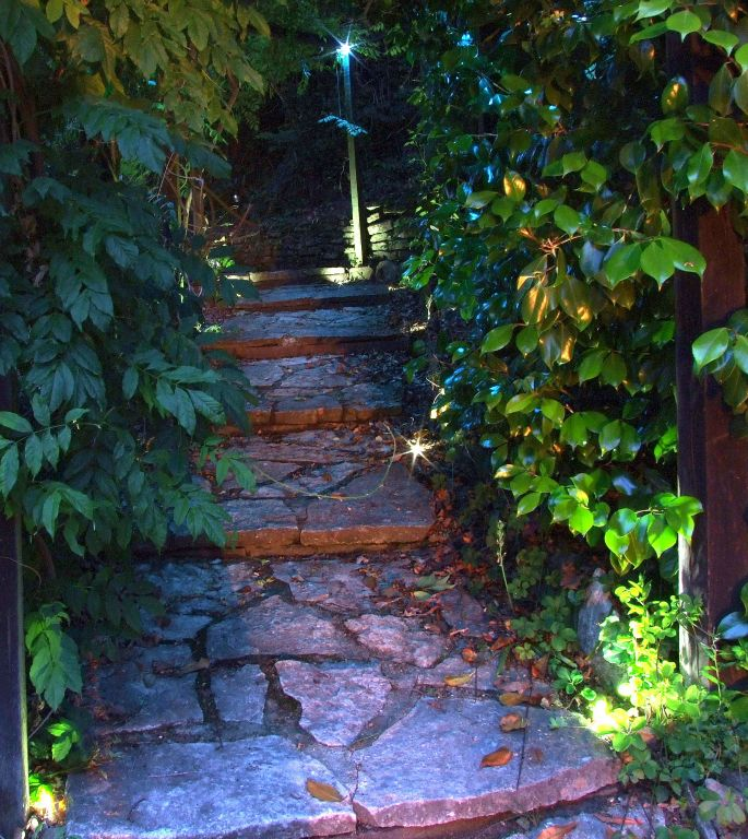 Paved steps lighting with pergola