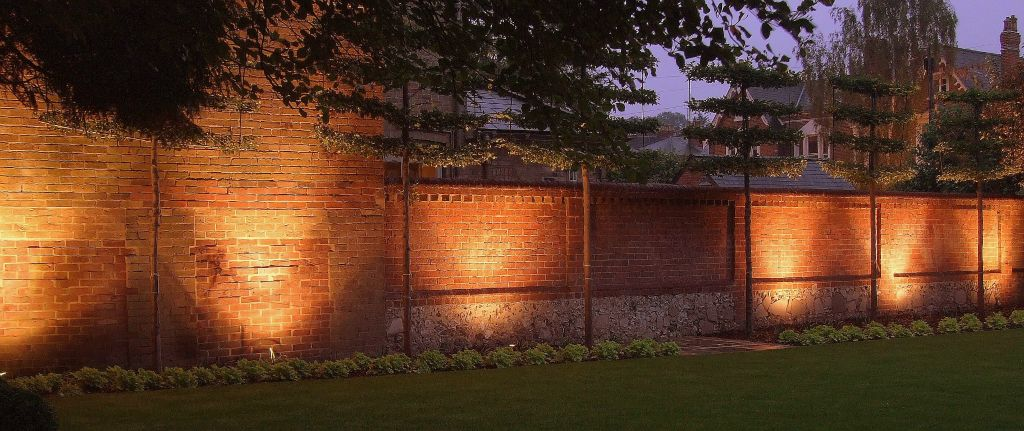 Garden wall lighting with pleached Hornbeam
