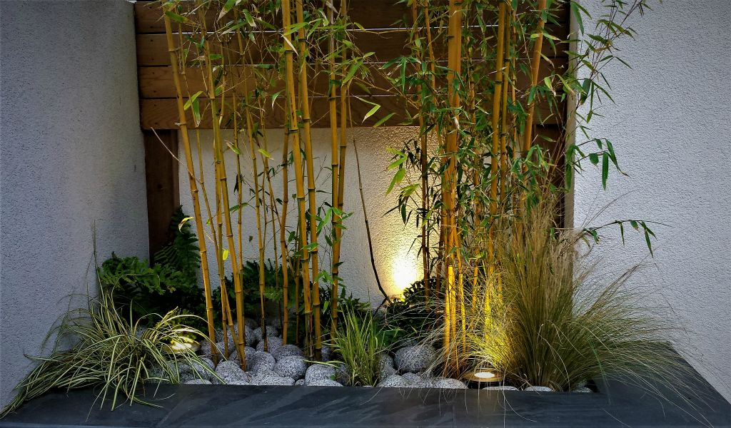 Walled garden lighting with bamboo